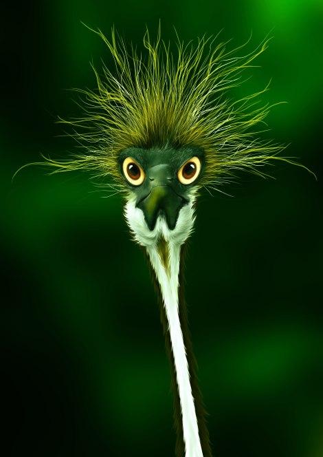 strange bird b