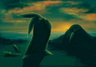 rabbit c