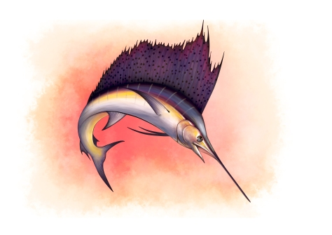 sailfish2
